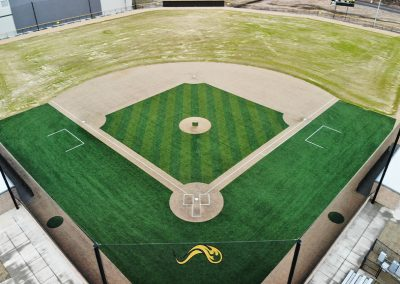 Mills Baseball Infield Turf